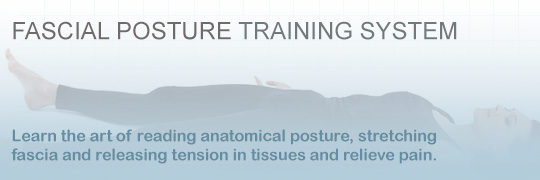 CPTN Fascial Posture Certification Workshops